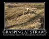 Grasping at Straws 1.jpg