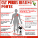 cats purrs healing powers.png