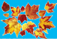 AutumnLeaves10.jpg