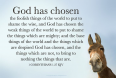 1st.Corinthians 1 27.jpg