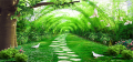 Doves on green coverd path to Heaven