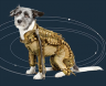 Russian Space Dog Astronaut