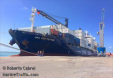 container ship fouteen per cent of shipping.jpeg