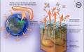 Methane Clathrates Threat