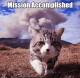 Misson Accomplished Kitty