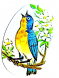 Blue bird singing graphic