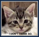 Kitty Caption - I Don't Think So