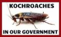 Kochroach