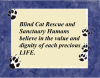 Blind Cat Rescue Values LIFE
