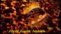 Fossil Fueler Heaven