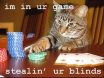 Kitty poker 1