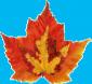 AutumnLeafdouble.jpg