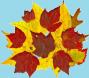 AutumnLeaves08.jpg