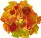 AutumnLeaves09.jpg