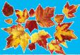 AutumnLeaves10.jpg
