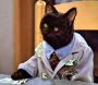 Bribed Kitty scientist_Fotor.jpg